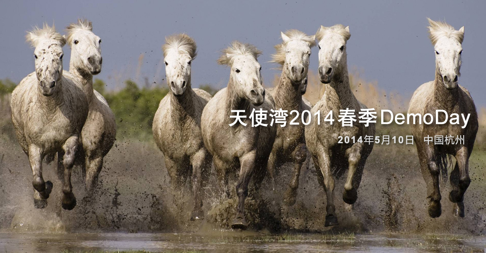 Horses_wallpapers_130